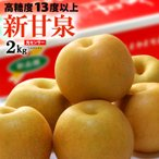 新甘泉梨(2kg)鳥取産 赤梨 しんかんせん 糖度13度以上 送料無料