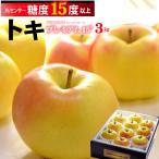 トキりんご(3kg)青森産 糖度15度以上選果 リンゴ 林檎 送料無料
