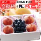 礼盒 - お中元セット 大糖領白桃とピオーネ 夏ギフトに最適な山梨桃と岡山種無しぶどう
