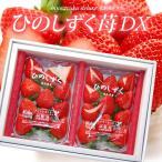 ひのしずくDX(約300g×2P)熊本産 いちご 苺 イチゴ 送料無料