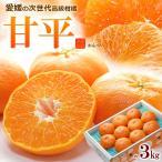 甘平2-3L(約3kg)愛媛産 かんぺい みかん 贈答 ギフト 送料無料