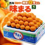 西海みかん 味まるみかん(5kg)長崎産 赤秀 贈答用 糖度12度以上 ミカン 蜜柑 送料無料
