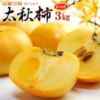 太秋柿(約3kg)熊本・愛媛・福岡産 秀品 たいしゅうがき 高級甘柿