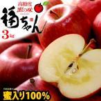 サンふじりんご 福ちゃん蜜入り選果(3kg)青森産 贈答用 りんご 林檎 サンフジ 送料無料 お歳暮 ギフト