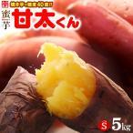 甘太くんSサイズ(5kg)大分産 紅はるか さつま芋 甘藷 送料無料