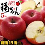 サンふじりんご 福ちゃん(5kg)青森産 糖度14度以上 リンゴ 林檎