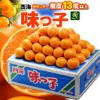 西海みかん 味っ子みかん(5kg)長崎産 贈答用 糖度13度以上 みかん ミカン 蜜柑 送料無料