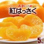 紅八朔(2-3L/5kg)広島産 赤秀 八朔 はっさく ハッサク 送料無料