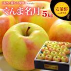 ぐんま名月りんご(5kg)長野産 リンゴ 林檎 りんご 贈答 送料無料
