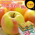 ぐんま名月りんご(10kg)長野産 リンゴ 林檎 りんご 秀 送料無料