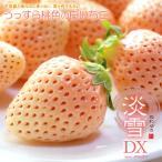 白いちご 淡雪(約200g×2P)熊本産 白イチゴ 白苺 ギフト送料無料