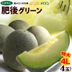 肥後グリーンメロン 4L×4玉(約8kg)熊本産 青肉メロン 送料無料