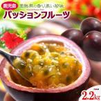 パッションフルーツ (22-30玉/約2.2kg)鹿児島産 高糖度 トケイソウ