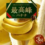 最高峰バナナ(700g×3袋)フィリピン産 バナナ 高地栽培 送料無料