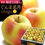 ぐんま名月りんご(約5kg)青森産 リンゴ 林檎 送料無料 お歳暮 ギフト