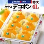 ハウスデコポン 4L(6玉/約2.4kg)熊本産 でこぽん デコポン 柑橘
