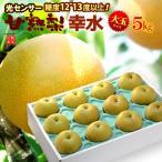 甘熟幸水梨3L-4L(5kg)糖度12度以上 大玉 幸水 送料無料 ギフト