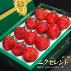 あまおうエクセレント(約450g)福岡産 いちご イチゴ 苺 送料無料