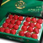 あまおうエクセレント(約900g)福岡産 いちご イチゴ 苺 送料無料