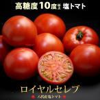 ショッピングセレブ ロイヤルセレブトマト(約900g)熊本県八代産 塩トマト 送料無料