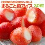まるごと苺アイス(30粒)いちごアイス イチゴ 練乳 送料無料