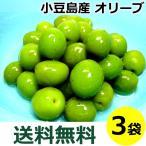 小豆島 オリーブ新漬け 100g×3袋 季節限定 新漬 オリーブ 塩漬け 漬物 オリーブの実 塩漬 国産 送料込み