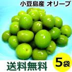 小豆島 オリーブ新漬け 100g×5袋 季節限定 新漬 オリーブ 塩漬け 漬物 オリーブの実 塩漬 国産 送料込み