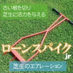古い根を切り芝生に活力を与えるローンスパイクJr【キンボシGS】GS4011
