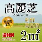 芝生 普通高麗芝 (日本芝) 1平米 最も広く利用される高麗芝で耐塩性が高い