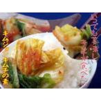 【体に美味しいお漬物】おおすみファームガンコ会長のキムチの素お試しセット