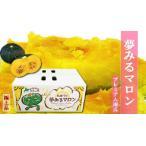 北海道 美瑛町産かぼちゃ 夢みるマロン10kg(4〜5玉)