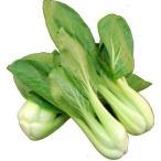 九州産 チンゲン菜(青梗菜・チンゲンサイ) 油炒めで栄養の吸収率がアップ! 1袋 九州の安心・...