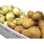 雅虎商城 - 野菜セット(根菜類セット) (内容 人参1kg・玉ねぎ2kg・メークイン2kg) 1箱(5kg) 北海道産