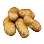 九州産 ばれいしょ(馬鈴薯・ジャガイモ・じゃがいも) 1kg 九州の安心で安全な野菜!  【九州・長崎・熊本・鹿児島産】