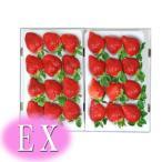 【いちご】 九州産 あまおう EX(エクセレント) 2箱(1箱9〜12粒入り) 福岡産(博多あまおうイチゴ) 九州の安心・安全な果物!
