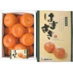 はまさき 12玉 2,5kg! 清見オレンジ・アンコール・マーコットを掛け合わせたグルメみかん。 九州の安心・安全な果物! 九州・唐津産