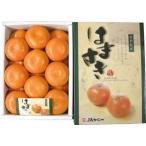 はまさき 18玉 2,5kg! 清見オレンジ・アンコール・マーコットを掛け合わせたグルメみかん。 九州の安心・安全な果物! 九州・唐津産