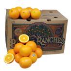 【箱売り】 オレンジ 1箱(56玉〜88玉入り) [フロリダ産・南アフリカ・オーストラリア] 【業務用・大量販売】