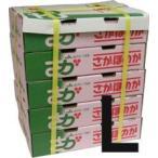 【箱売り】いちごLサイズ約20粒×20パック(さがほのか、さちのか、とよのか、あまおう、紅ほっぺ) 【業務用・大量販売】