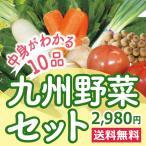 なかみが分かる 九州野菜セット《きゃべつ・ピーマン・なす・エリンギ・小松菜・きゅうり・とまと・さつま芋・しめじ・水菜》