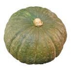 国産 かぼちゃ(カボチャ・南瓜) とても栄養価の高い野菜! 1玉 【九州産・北海道産】
