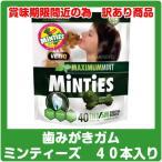 (期間限定 送料無料!)ミンティーズ Minties(40本入り)歯磨きガム