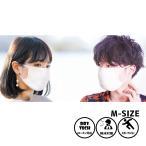 スノーボードウェアメーカーが作った洗えるマスク M 2枚セット フェイスマスク メンズ レディース 大人用 ドライテック 速乾 涼しい 立体 プリーツ 白 洗える
