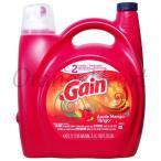 ゲイン液体洗剤 アップルマンゴータンゴ 4.43L