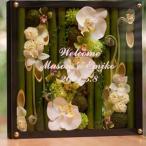 和木製フレームウェルカムボード胡蝶蘭ーホワイト|【和風のウェディングに竹に胡蝶蘭とシンビジュームの花を彩ったフラワーアレンジメント。】