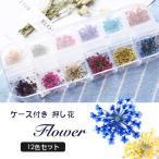 ドライフラワー 押し花 フラワー 12カラー セット ネイル 花 12色 ネイル用品 ホイル ジェル ネイル レジン パーツの埋め込みに