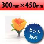 塩ビ板 透明 300×450mm 厚み0.5mm