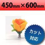 塩ビ板 透明 450×600mm 厚み3mm