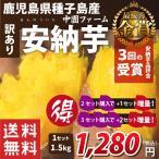 安納芋 種子島産 さつまいも 生芋 訳あり 1.5kg 送料無料(沖縄・離島を除く) セット購...