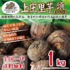 【福井県産】上庄里芋 頭(かしら) 1kg 種用・食用 送料無料!(沖縄・離島を除く)